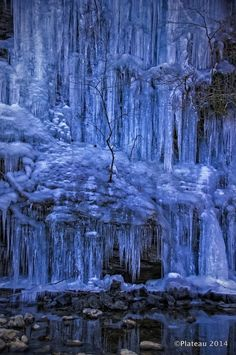 ❄ A MidWinter's Night's Dream ❄... Icicle Cave at Misotsuchi, Saitama, Japan 三十槌の氷柱... By Artist Unknown...