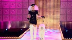 Ru Paul's Drag Race Sharon Needles