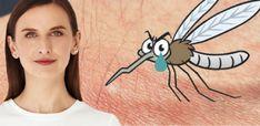 """Spurek martwi się o """"cierpienie"""" ryb: """"Tak jak każde inne zwierzęta, mają swoje prawa"""". Ciekawe co z komarami? – Niezależna Gazeta Obywatelska"""