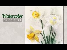 How to Draw a Daffodils (Narcissus) Watercolor. Tutorial. - YouTube