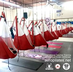 Aero Pilates Institute Presenta las Próximas Fechas Cursos   AERO PILATES INSTITUTE