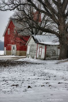 Two barns - Photograph at BetterPhoto.com