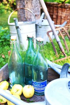 Vintage bottles and apples from my garden.