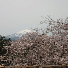 Mt.Iwakisan