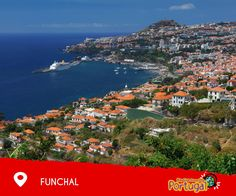 Explore Funchal and all the things to do there with City Sightseeing Portugal!  Descubra o Funchal e tudo o que tem para oferecer com a City Sightseeing Portugal!