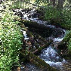 Tipperary Creek Trail in Fraser, co....