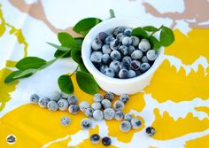 Freezing blueberries is the quickest way to preserve your harvest.