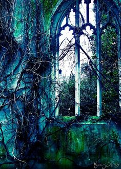 abandoned church- this looks like stained glass, so appropriate! great photography