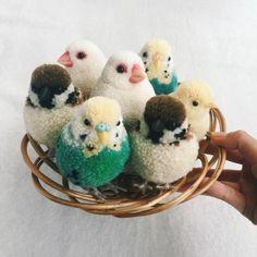 fabriquer un pompon, oiseaux en pompons, peluches, panier
