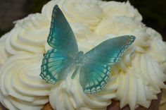 Hey, I found this really awesome Etsy listing at https://www.etsy.com/listing/170612995/edible-butterfly-green-teal-monarch-set