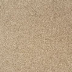 "Found it at Wayfair Supply - Legato Embrace 19.7"" x 19.7"" Carpet Tile in Shaving…"