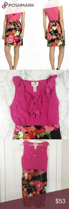 Anthropologie Tabitha Great Escape Dress Anthropologie dress. Hot pink top with ruffle detail and front zipper. Lined black skirt with fun floral print. Side pockets. Hidden side zipper. Anthropologie Dresses
