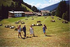 [1994] Familie Demetz (Mulins) bei der Heuarbeit. - Fam. Demetz (Mulins)