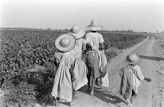 Mississippi sharecroppers, 1936.