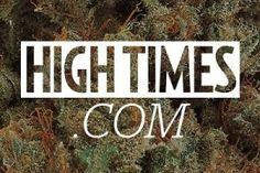 2016 Michigan Medical Cannabis Cup: CBD Edible Entries - https://houseofcobraa.com/2016/06/10/32234/