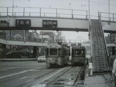 亀戸駅前で8000型どうしのご対面。錦糸町交差点を通過すると亀戸まではスイスイ走れていました。そして先は専用軌道、ここは元城東電鉄だった路線なのでした。