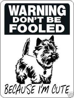 Cairn Terrier Aluminum Sign Dog Breed D3305 | eBay