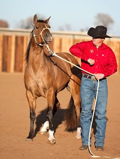 Training Tip of the Week: Mouthy horse tip: Make the horse correct himself.