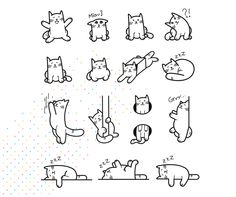 Kot w worku on Behance Doodle Drawings, Easy Drawings, Doodle Art, Easy Cat Drawing, Bullet Journal Ideas Pages, Bullet Journal Inspiration, Animal Doodles, Cat Tattoo, Learn To Draw