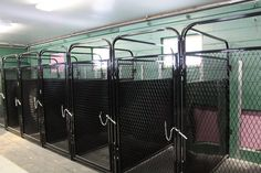 Dog Boarding Kennel Designs | Kennel Systems | Kennel Designs, Outdoor Dog Runs, Canine Kennels ...