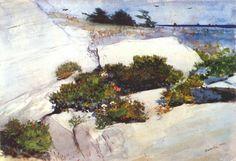 Shore at Bermuda - Winslow Homer - WikiArt.org