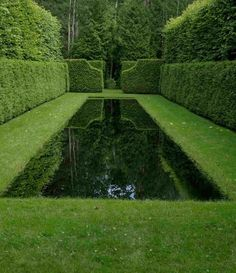 Isn't this reflection pond incredible? I love how the hedges at the end of the pool are reflected in the dark waters of the pond and are framed by the hedges alongside, making the reflection an art form itself. Garden Pool, Water Garden, Garden Landscaping, Balcony Gardening, Herb Gardening, Formal Gardens, Outdoor Gardens, Hedges, Cerca Natural