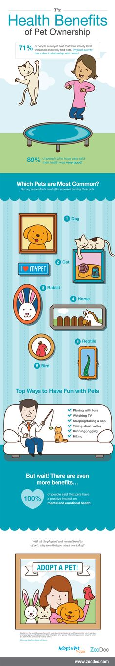 Check out the many health benefits of pet ownership.      Yes, pets have always decreased my anxiety and lifted my spirits.