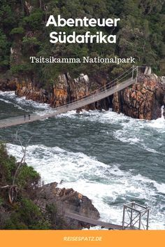 Im Garden Route Nationalpark in Südafrika befindet sich die wunderschöne, sehr grüne Tsitsikamma Section.