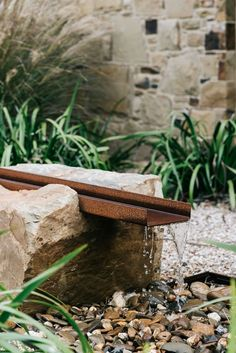 Australian contemporary garden designed by Kathleen Murphy Landscape Design Australian contemporary Australian Garden Design, Australian Native Garden, Contemporary Garden Design, Contemporary Water Feature, Modern Landscaping, Landscaping Plants, Landscaping Design, Bush Garden, Minimalist Garden
