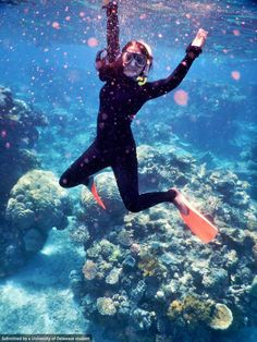 Elizabeth Bell, studying business in Australia/ New Zealand, goes down under to swim the Great Barrier Reef! #UDAbroad