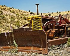 In the Face of Adversity - photograph by Lee Craig. Fine art prints for sale. #adversity #desertlife #junkyardfinds
