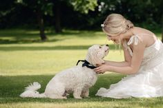 A bride with her cavachon dog at her wedding at Wethele Manor in Leamington Spa, Warwickshire Photo by Sarah Vivienne Photography Wedding Dress Boutiques, Wedding Dresses, Cavachon, Bridal Fashion, Vivienne, Bridal Style, Wedding Styles, Spa, Weddings