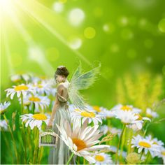 """Fairy"" by beth-walkingonsunshine (Beth Zeen) on Polyvore"