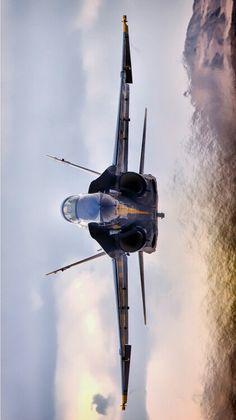 Blue Angels F/A-18 Super Hornet                                                                                                                                                      More