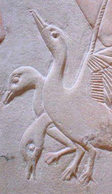Ducks. Tomb (Mastaba) of Kagemni in Saqqara, Egypt. 6th Dynasty