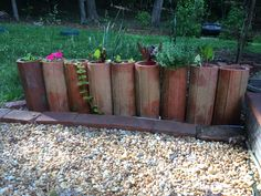 Repurposed terra cotta bottelero tiles into planters. Typically these are used to store wine bottles in when they're laid flat and stacked in different patterns
