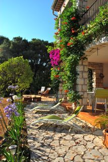 Holiday Rental on the French Riviera between Biot and valbonne Antibes, French Riviera, Arch, Beautiful Places, Outdoor Structures, Garden, Holiday, Plants, House