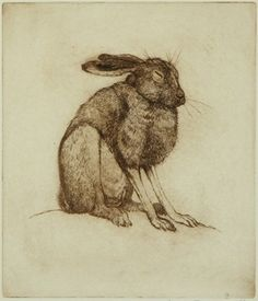 Anna Ravenscroft  Sleeping Hare