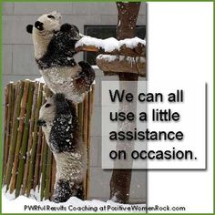 Got a buddy to help out when you need some assistance? http://PositiveWomenRock.com/gift/ for Free Life Strategies #inspiration #positive #motivation