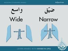 Wide - Narrow