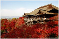 Kiyomizu-dera in autumn (清水寺), Kyoto | Flickr - Photo Sharing!