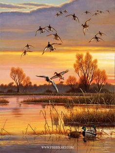 """Mallards18 """"Evening Refugio"""" x 24 """"-Ducks, gansos y aves acuáticas"""