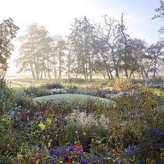Museum voorlinden 2016 annual borders. Foto Walter Herfst. Private Garden, Green Garden, Deck Design, Flower Beds, Garden Styles, Gardening Tips, Wild Flowers, Flora, Country Roads