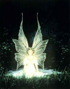 Image detail for -publicfigure: Fairies and Pixies