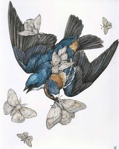 "Opening the 24th is ""The Silent Aviary"" exhibition at The VACVVM in Minneapolis, MN! included in the show is my cute little piece: ""Swallows"", 2016 Ballpoint Pen, Ink Pencils, Colored Pencils, Graphite and Gel Pen on Multi-media Paper, 8 inches by 10 inches (12 inches by 14 inches framed). Please contact me or The VACVVM for any questions! #thevacvvm #silentaviary #contemporaryart #laurenmarxart #drawing #painting #illustration #penandink #swallows #birds #moths #artoftheday"