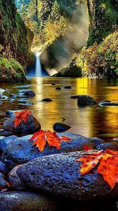 Waterfall reflections in Autum Beautiful Nature Wallpaper, Beautiful Landscapes, Beautiful Scenery, Beautiful World, Beautiful Images, Beautiful Dream, Beautiful Things, Landscape Photography, Nature Photography