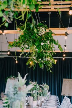 Wedding receptions and ceremonies are delightful moments at the Tailrace Centre. Marriage takes longer then a day to plan and we are here to help. Wedding Receptions, Event Styling, Lush, Centre, Marriage, Table Decorations, Lighting, Green, Plants