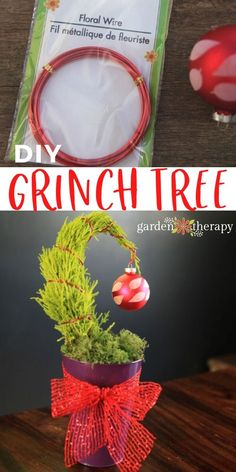 Not only is it adorable and brings back happy childhood memories of Dr. Seuss's Beloved How the Grinch Stole Christmas, but this miniature Grinch tree is also a table-top reminder of the spirit of the holidays. Learn how to make one and, more importantly, why you should! #gardentherapy #christmas #homemadegifts #grinchtree #holiday #indoorplants Grinch Stole Christmas, Diy Christmas, Grinch Trees, Small Trees, Garden Projects, Homemade Gifts, Indoor Plants, A Table, Childhood Memories