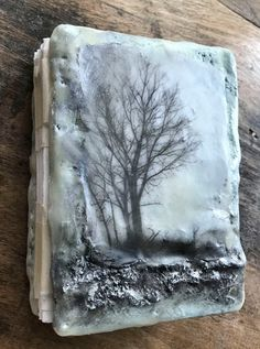 Samples of books - Introduction - The makings, of a plaster and wax book