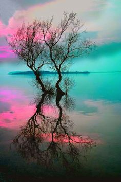 COOL REFLECTION